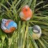 vogeltjes beschilderen