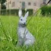 grijze haas voor in de tuin